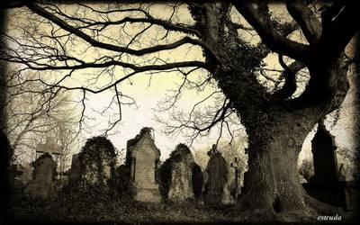 Old Victorian Cemetery by Estruda
