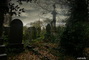 Cemetery Graves by Estruda