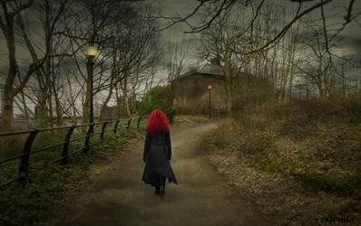 Going Home by Estruda