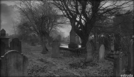 The Garden Of Eternal Sleep by Estruda