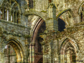 The Abbey Of St Mary Of Melrose,. 3 by Estruda