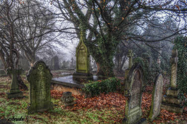 St Catherines Cemetery by Estruda