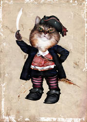 pirate cat by gw3n