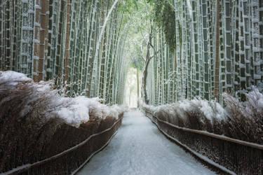 Zen Snow by porbital