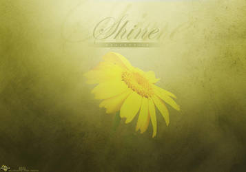 Shine by Recks-4you