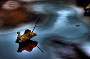autumn souvenir by Alandil-Lenard