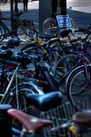 Rent a bike by Alandil-Lenard
