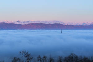 Foggy morning by morglin