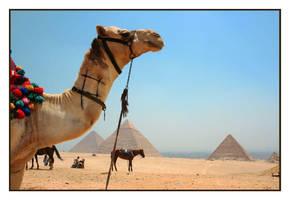 Piramids by Quilla6