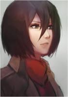 Mikasa by conceptfox