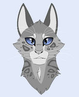 11. Cinderpelt by CHAR-C0AL