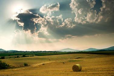 Summer Sun by NickKoutoulas
