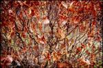 End of Autumn : 13 by DecoyRobot