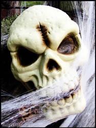 Halloween : Skull by DecoyRobot