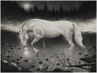 Backahasten / Water Spirit by Derek-Castro