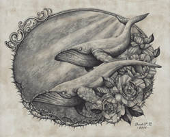 Whales and Flowers by Derek-Castro