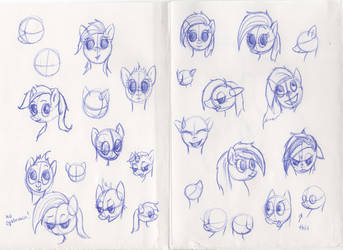 pony head studies by drakenfolk