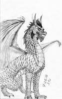 Dragon sketch by Zanora-zara