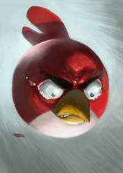 Angy Bird by Taclobanon