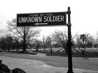 Unknown Soldier by sceneboyzombieturtle