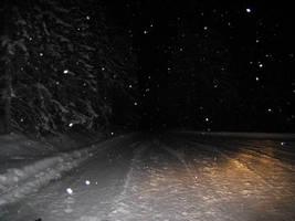 Winterforest by night by Datasmurf