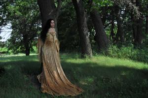 Gold Dress 042 by elusiveelegance