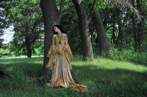 Gold Dress 038 by elusiveelegance