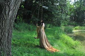 Gold Dress 025 by elusiveelegance
