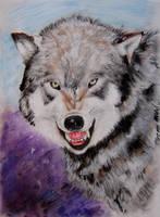 WOLF by Cayasha
