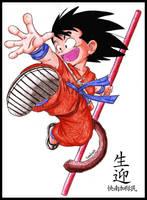 Kid Goku by LucasTsilva