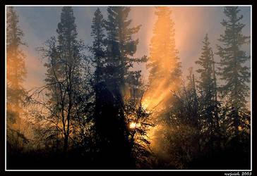 Autumn 05 by wojcieh