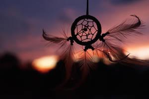 Follow your dreams and flyyyy. by OoBlueGirloO