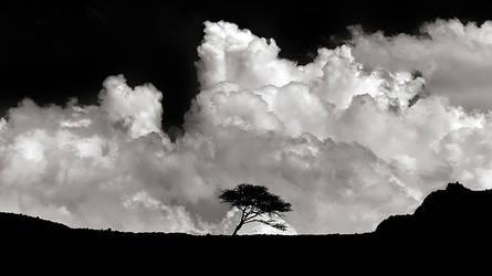 l'image monumental by Alex80