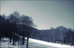 Inverno by cleo72
