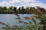 Lake by cleo72