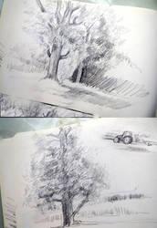 Sketching by Bisat