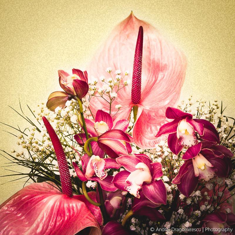 Bouquet by DrAndrei