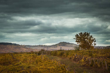 Over the Hills by DrAndrei