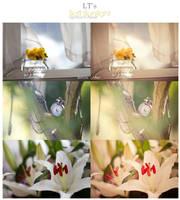 LT's Soft Sunlight LR Preset by Lady-Tori