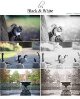 Black and White Lightroom DELUXE Pack by Lady-Tori