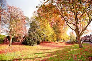 Vibrant Autumn by Lady-Tori