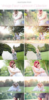 Brand new Vintage Fawn Lightroom Preset by Lady-Tori