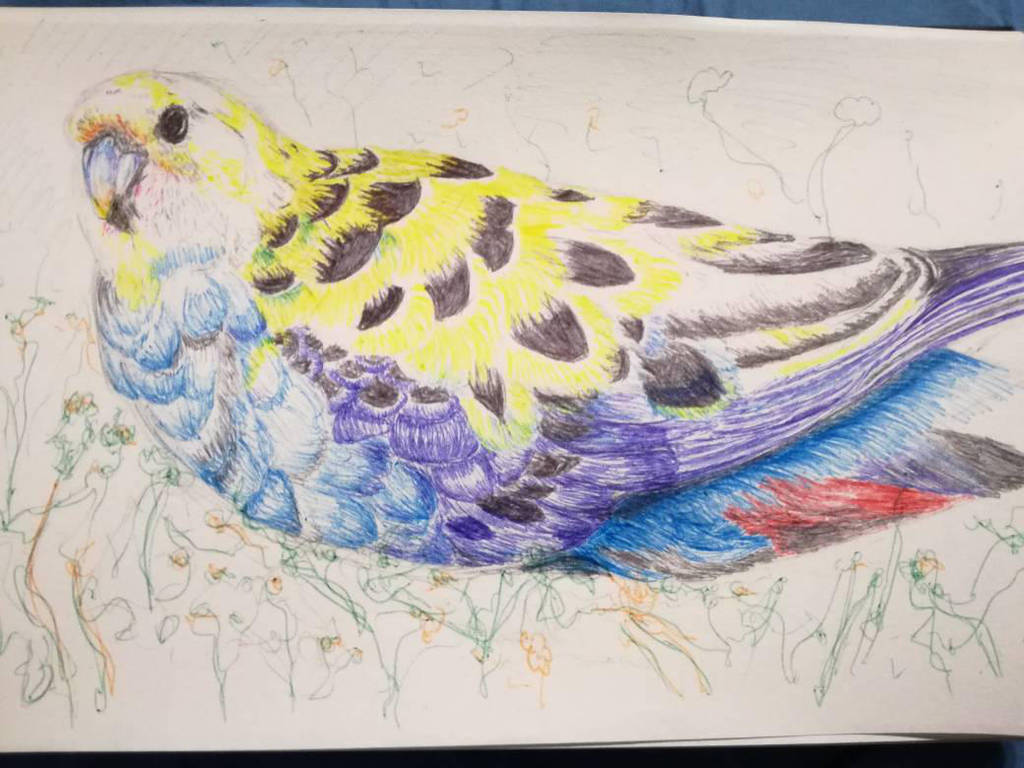 Bird, ballpoint pen on paper by Deathilya