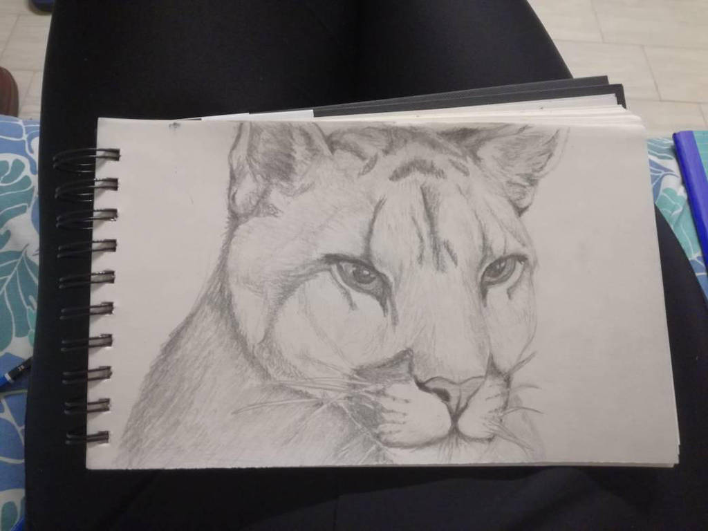 big catto by Deathilya