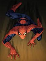 Spidercrawl by SpiderGuile