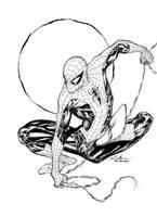 Spider-Man - Paris Manga SciFi Show feb2014 by SpiderGuile