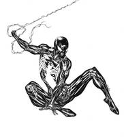 The Amazing Spider-Man (black suit) by SpiderGuile