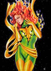 Phoenix by AllisonSohn