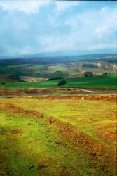 Lomo Moorland by Bow-Wow