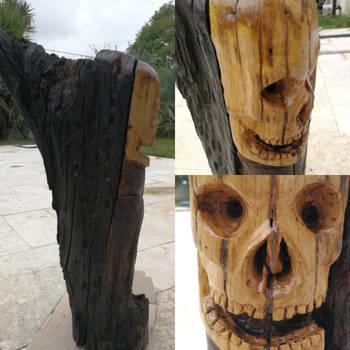Skull log by Glorac